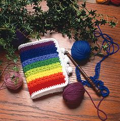 Hook case--free pattern
