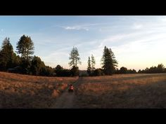 #GoPro reveals test footage from its prototype drone www.motionvfx.com/B4240 #FCPX #VideoEditing #DSLR #VideoProduction