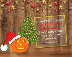 funny Christmas decorating quotes - Google Search Christmas Card Sayings, Christmas Jokes, Christmas Music, All Things Christmas, Before Christmas, Christmas Presents, Christmas Lights, Christmas Cards, Christmas Decorations
