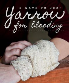 5 Ways To Use Yarrow For Bleeding | Bulk Herb Store Blog | Yarrow is an excellent styptic herb. Learn 5 ways to use yarrow for wounds.