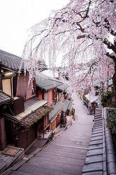 Flashbacks of Japan's Ancient Capital 🌸Kyoto