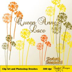 Buy Photoshop Brush Vintage Queen Annes Lace Instant Download Wedding Digital Scrapbooking  Flourish, Elements and Clip Art L1512 by sparkal. Explore more products on http://sparkal.etsy.com
