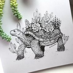 I'm Weronika, I'm a t-shirt designer and illustrator from Poland. For as long as I can remember I was fascinated with nature and animals. As a child I spent days observing the lives of insects and other small creatures in my garden or watching David Attenborough's documentaries. Tortoise Drawing, Tortoise Tattoo, Art Drawings Sketches, Ink Illustrations, Animal Drawings, Drawing Designs, Illustration Art, Art Du Croquis, Flora Und Fauna
