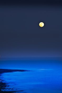Magnificent Moonlight | Blue Moon by jimbryan via sinesa majetic on Google+  #moonlight #moonscape…