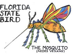 Homemade Insect Spray - No-one wants insects in their home but, there are many people who do not want to spray chemical insect sprays either. Florida Girl, Visit Florida, Old Florida, Miami Florida, Florida Beaches, Florida Living, Avon Park, Going To Cuba, State Birds