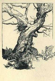 Duke of Oak by Arthur Rackham