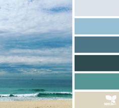 color shore                                                       …
