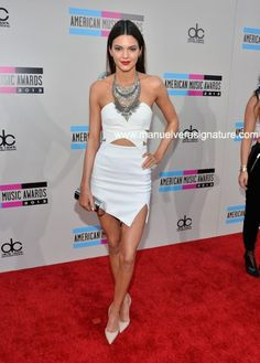 AMAs 2013 Red Carpet best looks