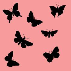 Little butterflies - Sisustustarrat