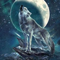Bon Mercredi Mes Amies Cette Rose Pour Vous Art Wolf - Les Loups Par Les Peintres Antonia Neshev Balades Comtoises Loups Par Les Peintres He Did Not Want To Surrender But He Could Feel The Power Forcing Him To The Ground Loup Blanc Loup Gris Meute D Madara Wallpaper, Wolf Wallpaper, Wolf Photos, Wolf Pictures, Fantasy Wolf, Dark Fantasy Art, Fantasy Creatures, Mythical Creatures, Tier Wolf