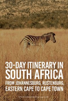 30-Day Itinerary in South Africa from Johannesburg, Rustenburg, Eastern Cape to Cape Town South Africa is blessed with more than its fair share of the world's incredible wildlife, landscapes and people. A land of contrast, from getting up close to leopards and lions on a safari at Kruger National Park, whale watching, lovely Winelands, spectacular Garden Route and of course the breathtaking coastline of Cape Town, South Africa is indeed a world crammed in one country.