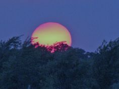 The Sunset in My Backyard The Outsiders, Backyard, Celestial, Sunset, Outdoor, Outdoors, Patio, Backyards, Sunsets