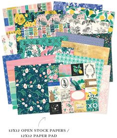 A beautiful paper assortment from the Maggie Holmes Flourish collection.