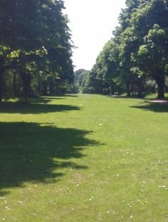 Norton common in letchworth this is good as there are many trees and fields