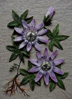 Passion Flower embroidered artwork by Corinne Young Hand Work Embroidery, Hand Embroidery Designs, Diy Embroidery, Cross Stitch Embroidery, Embroidery Patterns, Machine Embroidery, Paper Moon, Textile Fiber Art, Textile Artists