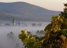 Tokaj in Hungary #wine