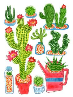 Potted cacti A Panther Named Amelie