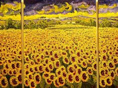 Sunflowers plenty, .. van Gogh? I dont think so!