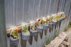 repurposing milk jugs into hanging planters