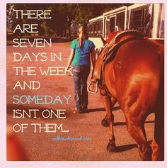 The Champions Mind… Chapter 3 brought to you by Kentucky Performance Products Focusing On Yourself Quotes, Be Yourself Quotes, Rodeo Rider, Big Sky Country, Horse Quotes, Chapter 3, Show Horses, Horse Racing, Going To Work