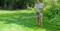 Der Rasen hat einen hohen Nährstoffbedarf. Zum einen sind Gräser keine Kostverächter, zum anderen müssen sie den Substanzverlust durch das Rasenmähen ausgleichen. So düngen Sie richtig.