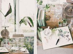Vintage, Botanical, flora, plants, colors, atmosphere, antique, lab equipment