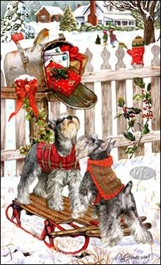 "Schnauzer Christmas cards are 8 1/2"" x 5 1/2"" and come in packages of 12 cards. One design per package. All designs include envelopes, your personal message, and choice of greeting. Select your greeting from the drop-down menu above.Add your personal message to the Comments box during checkout."