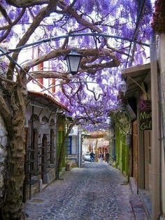 Cobblestone Streets of Molyvos, Lesvos Greece - Most Beautiful Places in the World Places Around The World, Oh The Places You'll Go, Places To Travel, Places To Visit, Around The Worlds, Dream Vacations, Vacation Spots, Wonderful Places, Beautiful Places