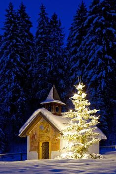 Christmas Eve...Illuminated Christmas tree in front of a chapel in the snow at night.