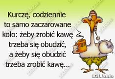 LOLfobia: Poranna kawa cytaty Weekend Humor, Motto, Lol, Album, Words, Memes, Funny, Quotes, Inspiration
