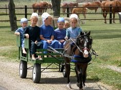 Young Amish girls, taking a ride in a small wagon being pulled by an adorable small horse....