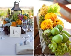 Paso Robles Winery Wedding at Still Waters Vineyards