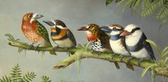 Suzan Visser painting of birds on a branch