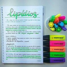 Lipídios College Notes, School Notes, School Motivation, Study Motivation, Study Biology, Study Organization, Pretty Notes, Lettering Tutorial, Study Hard