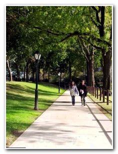 13 Best Grad school Prep images | Graduate School, Prep