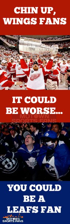 Chin up, Wings fans...it could be worse...you could be a Leafs fan! #RedWings Detroit Red Wings
