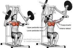 Machine chest press exercise