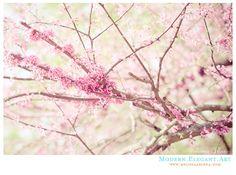#seasons #season #spring