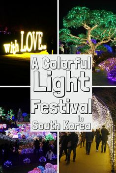 Every winter the Garden of Morning Calm puts on a beautiful display of lights. An amazing sight to see when in Korea!