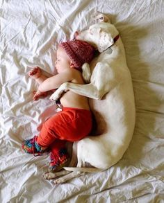 Abused dog is terrified of everything except for this baby, so Mom grabs her camera (7+ photos)