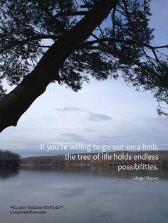 Go ahead... climb the tree of life.