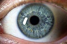 Her Bir Göz Işığa Duyarlı 107 Milyon Hücreye Sahiptir