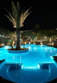 #Pool with a #Palm_Tree in the middle - I have no tree but very cool...could do a bar