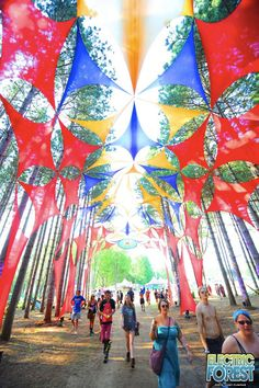 Gallery 2012 :: Electric Forest Festival I wanna go! Forest Festival, Festival Party, Rave Festival, Electric Forest, Parc A Theme, Shade Structure, Psychedelic Art, Land Art, Public Art
