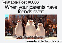 #funny #penguins