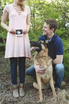 Pregnancy announcement with dog #pregnancy #announcement #gsd #germanshepherd