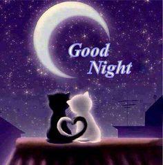 [ARCHIVES 002] : Ici, on papote à la terrasse ou autour d'un feu (2018-...) - Page 4 D997f4052c7158517a3ec1c4b15c672c--good-night-cat-painted-canvas