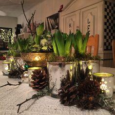 Juldekoration bordsdekoration hyacinter Scandi Christmas Decorations, Table Decorations, Plants, Furniture, Home Decor, Decoration Home, Room Decor, Home Furnishings, Plant