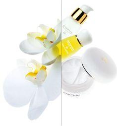 Darphin Skincare -- focal color