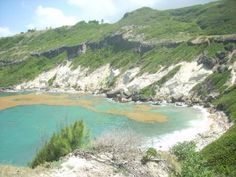 Gay's cove